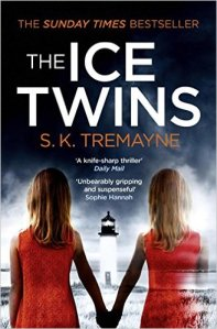 The Ice Twins 2