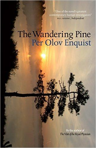 The Wandering Pine