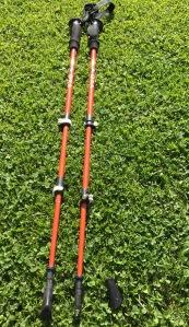 Hiking Poles 2